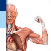 App Icon: PROMETHEUS - LernKarten der Anatomie 3.0.2
